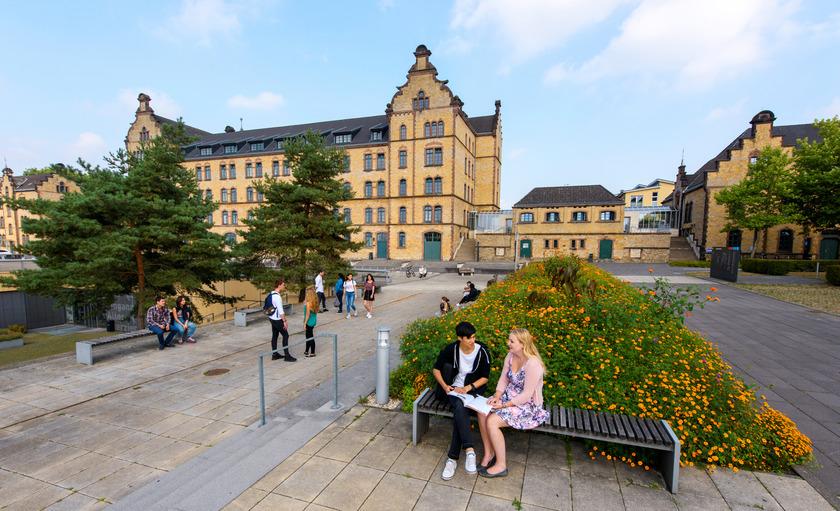 Ranking Hochschule